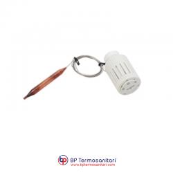 R462L Testa termostatica