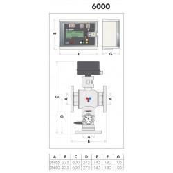 6000 - LEGIOMIX® - MISCELATORE ELETTRONICO - CALEFFI - BP TERMOSANITARI